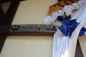 veslija-zolochiv-blue-27